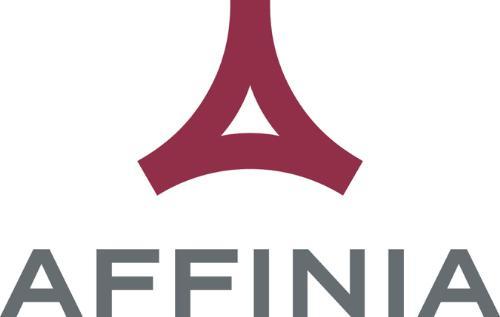 Affinia Group, Inc. - logo. (PRNewsFoto/Affinia Group, Inc.)